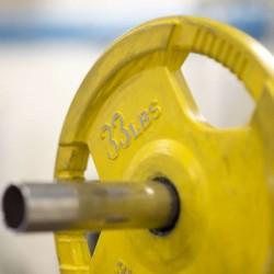 Suscripción Fitness Nro.1 X...