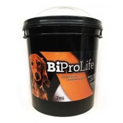 Suplemento Probiótico para...