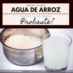 Seguí a @organicrosario  para más tips como este 👉📝 . 🔅 Agua de Arroz 🔅 Sabías que cada vez que haces arroz podes utilizar el agua -que soles tirar- como fertilizante para tus plantas o como tónico facial❓ . Los nutrientes del agua de arroz pueden convertirse en un excelente alimento para el desarrollo de tus plantas, simplemente rega la base cuando ya no le de el sol 👉👍 . Tambien podes llenar una botella de vidrio y refrigerarla para utilizarla luego aplicando en el rostro con un algodón. Tu piel va a lucir más suave y más desinflamada 💪 . . Etiqueta a alguien que esté tratando de aprovechar los desperdicios y utilizarlos saludablemente🙏❤️ . Si el arroz es ⭐orgánico⭐ mucho mejor. Podes conseguirlo en nuestra tienda online de productos orgánicos y naturales ⤵️ 🔹🔹🔹🔹🔹🔹🔹🔹🔹🔹🔹 🛒tienda.organic.com.ar 📩 info@organic.com.ar 🔹🔹🔹🔹🔹🔹🔹🔹🔹🔹🔹 . . . . . . #desperdicio #desperdiciocero #arrozintegral #aprovechamiento #cerodesperdicio #ceroresiduos #arrozcremoso #concienciaambiental #residuocero #sindesperdicio #arroznegro #fertilizante #fertilizantes #fertilizanteorganico #cambiaxorganic #cerobasura